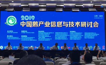 qy888千赢国际集团参加2019年中国鹅产业信息与技术研讨会